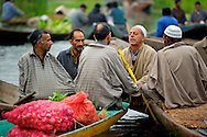 A group of men, early morning, trading in a floating vegetable market on the Dal Lake.