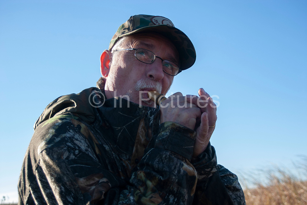 Experienced hunter Timmy Stein makes calls using one of his duck callers, whilst duck hunting near Minot, North Dakota, United States. Timmy has been shooting for most of his life and puts considerable efforts into his hunting, efforts which reward him with wild game meats. In this part of North Dakota, glacially formed flat land is filled with pock-marked shallow holes, which fill with eater making ideal sloughs for ducks such as Mallard, Widgeon and the more prized Canvas Back. The caller is used to make female and feeding noises to attract in other ducks.