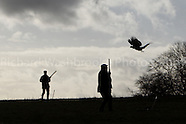 Luton Hoo Estate Shoot  13th January 2014