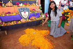 North America, Mexico, Oaxaca Province, Ocotlan,  female student creating cross of marigold petals below altar for  Day of the Dead (Dias de los Muertos) celebration