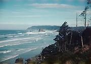 """CS03620. Cannon Beach. """"Oregon Coastline from Highway 101. March 1952"""" """"N. H. Adams. Carmel Ca."""""""