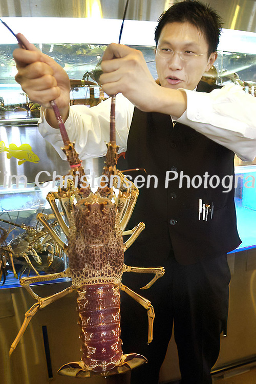 Sinh Sinh waiter, Patrick Lau is not so sure about showing off an Australian Spiny Lobster at the restaurant 11/09/03.  (Photo by Kim Christensen)