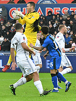 Football - 2018 / 2019 Emirates FA Cup - Fourth Round: Swansea City vs. Gillingham<br /> <br /> Erwin Mulder of Swansea City catches the ball , at Liberty Stadium.<br /> <br /> COLORSPORT/WINSTON BYNORTH