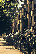 Bayridge, Brooklyn, New York