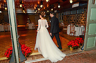 Amy & Anthony's wedding Wednesday December 23, 2015 at Carriage House at Rockwood Park in Wilmington, Delaware. (Photo by William Thomas Cain)