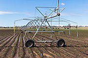 Mobile lateral move irrigation boom system in field of new vegetable crop near Warwick, Queensland, Australia. <br /> <br /> Editions:- Open Edition Print / Stock Image