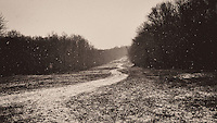 Long Winding Road. Winter Snowstorm at the Sourland Mountain Preserve. Nikon D300 18-200 mm f/3.5-5.6 VR lens (ISO 400, 26 mm, f/5.6, 1/800 sec). Raw image processed with Capture One Pro 7 and NIK Silver Efex Pro 2.