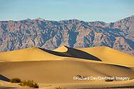 62945-00219 Sand Dunes in Death Valley Natl Park CA