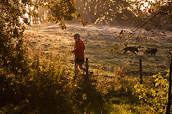Hampstead Heath, London, October 28th 2014. A runner makes his way through the last of the early morning mist.