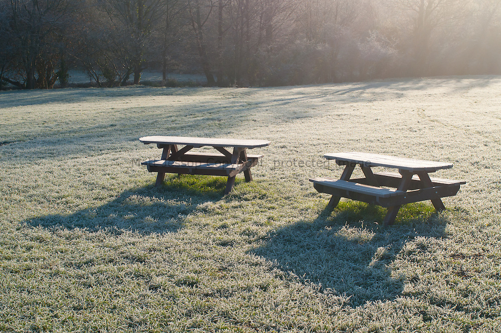 Frosty Benches
