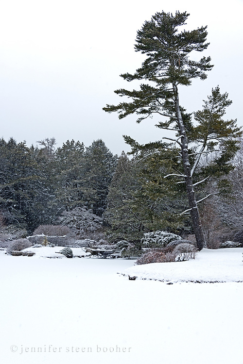 View over the lake at the Asticou Azalea Garden in Northeast Harbor, Maine, during a snowstorm.