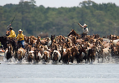 Chincoteague Pony Swim, VA