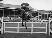 """07/08/1980<br /> 08/07/1980<br /> 07 August 1980<br /> R.D.S. Horse Show: John Player Top Score Competition, Ballsbridge, Dublin.  Captain J. Roche on """"Castle Park""""."""