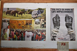 """Photo taken on March 1, 2016 shows an anti-poaching poster (R) and photos of community awareness activities by Save the Elephants, at STE camp in Samburu National Reserve, Kenya. In northern Kenya's Samburu region, there lives the second largest group of elephant species in this country. Around them, a number of elephant defenders have watched them day and night for the past 18 years. Founded in 1993, the organization Save The Elephants (STE) has been devoting its attention to secure the future of elephants and battle the ivory poaching. The World Wildlife Day is observed on March 3 with """"The future of wildlife is in our hands"""" being the theme and """"The future of elephants is in our hands"""" being the subtopic this year. EXPA Pictures © 2016, PhotoCredit: EXPA/ Photoshot/ Sun Ruibo<br /><br />*****ATTENTION - for AUT, SLO, CRO, SRB, BIH, MAZ only*****"""