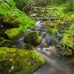 Perham Stream on Lone Mountain near the Appalachian Trail in Mount Abram Township, Maine. High Peaks.