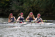 Crew: 32 - HMSG RC HAB-Werret    Event: W.J17A.4+<br /> <br /> Afternoon Division<br /> Worcester Small Boats Head 2016<br /> <br /> To purchase this photo, or to see pricing information for Prints and Downloads, click the blue 'Add to Cart' button at the top-right of the page.