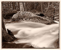 Tenaya Creek Early Spring in the Woods. Yosemite National Park. Composite of four images taken with a Nikon D3x and 45 mm f/2.8 PC-E lens (ISO 100, 45 mm, f/16, 2 sec) combined using Kolor AutoPano Giga Pro. Converted to sepia with Nik Silver Efex Pro 2.