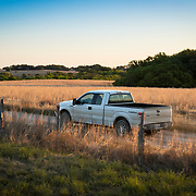 Ford Truck in Texas