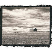 A small farm outbuilding in the middle of a grain field sits on top of one of the rolling hills in the Palouse area of Eastern Washington.