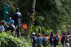 A large section of branch cut from a tree by a tree surgeon working on behalf of HS2 Ltd falls close to security workers and HS2 Rebellion activists taking direct action to prevent or delay tree felling works in conjunction with the HS2 high-speed rail link in Denham Country Park on 7 September 2020 in Denham, United Kingdom. Anti-HS2 activists continue to campaign and take direct action against the controversial £106bn project for which the construction phase was announced on 4th September from a series of protection camps based along the route of the line between London and Birmingham.