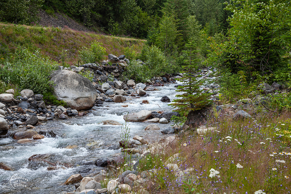 Carpenter Creek flowing through abandoned mining ghost town of Sandon, Slocan Valley, West Kootenay, British Columbia, Canada