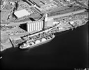 "Ackroyd 21197-7 ""Bunge Grain, October 3, 1980"" (Balfour, Guthrie & Co., Bunge Grain, Permanente Cement dock, Cargill Irving grain elevator, ECSI # 5561, 800 N. River St.)"
