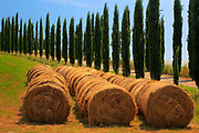 Hay bales and cypresses in the Tuscan countryside