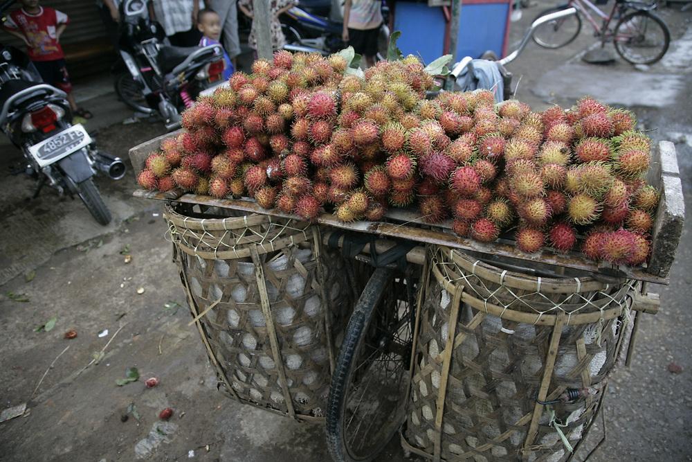 Rambutan tropical fruit, on bicycle tray, freshly gathered for market, Indonesia