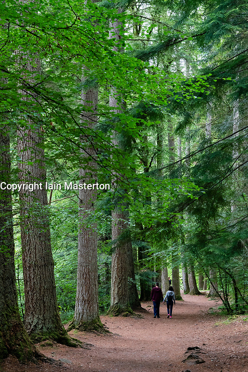 Couple walking among mature trees at The Hermitage near Dunkeld in Perthshire, Scotland, UK