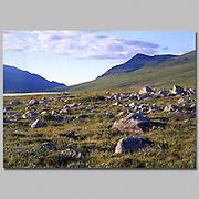 Alaska. Arctic National Wildlife Refuge. ANWR. Hulahula River, Kolotuk Creek area. Lichen covered boulder field below unnamed peaks.