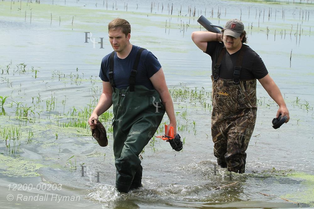 Hyfi field techs Matt Craddock and Nik Krantz (l,r) wade to shore after driving post for water sensor deep into thick mud of water-filled wetland at Shiawassee National Wildlife Refuge; Saginaw, Michigan.