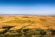 Idaho viewed from Steptoe Butte with a sea of hills and mogules covered by wheat, barley and canola fields.