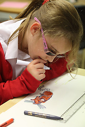 Girl drawing and  colouring at Mysight charity for children with visual impairments, Nottingham.