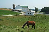 Amish Country Farm. Near Berlin, Ohio.