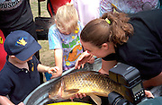 Woman age 25 showing gigantic Carp to kids ages 3 and 4.  Brooklyn Park  Minnesota USA