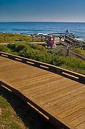 Wooden boardwalk along the coastal bluffs at Cambria, California