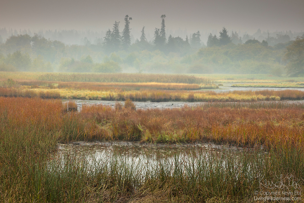 Smoke from large wildfires results in a smoky haze that blankets the Edmonds Marsh, a saltwater marsh located off Puget Sound in Edmonds, Washington.