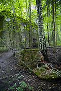 Wilczyczy Szaniec (niem. Wolfsschanze) – w latach 1941–1944 kwatera główna Adolfa Hitlera.
