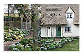 Clover Cottage as featured in the January 2020 issue ofGardens Illustrated