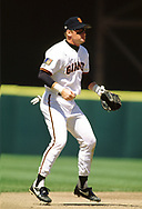 SAN FRANCISCO - 1994:  Matt Williams of the San Francisco Giants fields during an MLB game at Candlestick Park in San Francisco, California during the 1994 season. (Photo by Ron Vesely) Subject:   Matt Williams