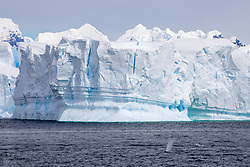 Orca Blows Along Glaciers & Mountains Neumayer Channel, Antarctica