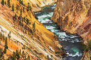 The Yellowstone River in the Grand Canyon of the Yellowstone, Yellowstone National Park, Wyoming USA