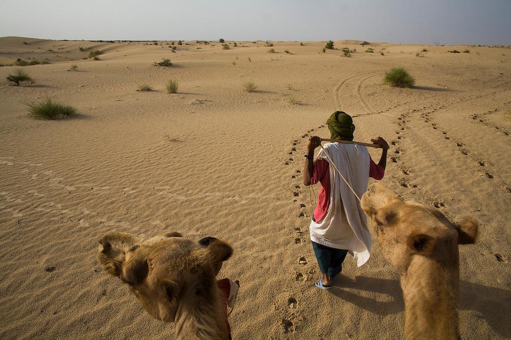 Tuareg man with camels in the desert around Timbuktu, Mali.