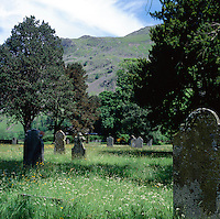 country cemetery with lots of space for nature