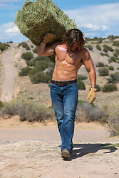 shirtless hot man carrying hay bale