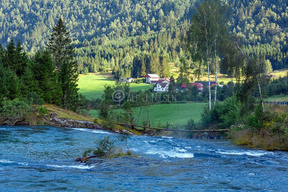 The river Hjelledöla at Folven, Stryn (Vestland county), western Norway in July.