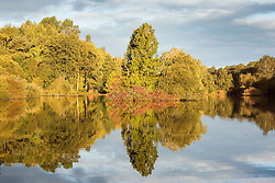 © Licensed to London News Pictures. 22/09/2015. Leeds, UK. Picture shows the colours starting to change on tree's around Golden Acre park in Leeds on the first day of astronomical Autumn which happens with the Equinox of September the 22/23. Photo credit: Andrew McCaren/LNP