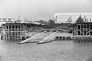 "Y-590824B-34. ""trip in Harbor Patrol boat on Portland Waterfront"" August 24, 1959. Swan Island drydock area."