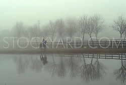 Riding by the pond on an early foggy morning