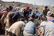 """25 FEBRUARY 2008 -- MAE SOT, TAK, THAILAND: Burmese migrant workers go through garbage in the dump in Mae Sot, Thailand. Hundreds of Burmese migrants eke out a living in the dump going through the garbage to sell what they find. There are millions of Burmese migrant workers and refugees living in Thailand. Many live in refugee camps along the Thai-Burma (Myanmar) border, but most live in Thailand as illegal immigrants. They don't have papers and can not live, work or travel in Thailand but they do so """"under the radar"""" by either avoiding Thai officials or paying bribes to stay in the country. Most have fled political persecution in Burma but many are simply in search of a better life and greater economic opportunity.  Photo by Jack Kurtz/ZUMA Press"""